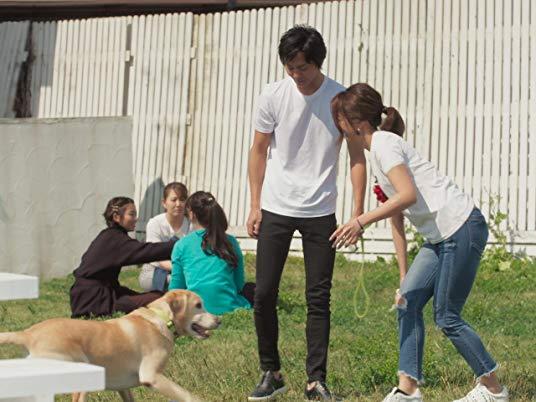 グループデート!犬たちと戯れるロマンチックデート